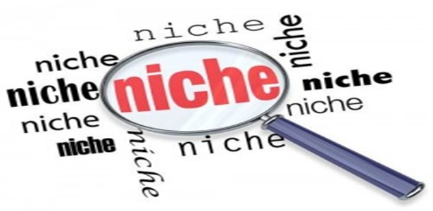 Niche Site là gì ?